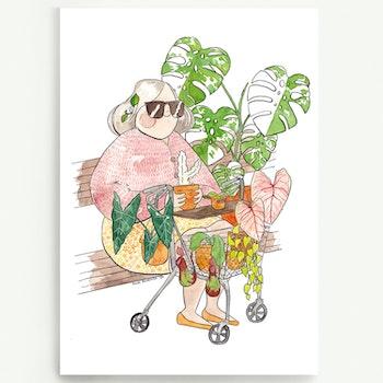 Plantlady A4