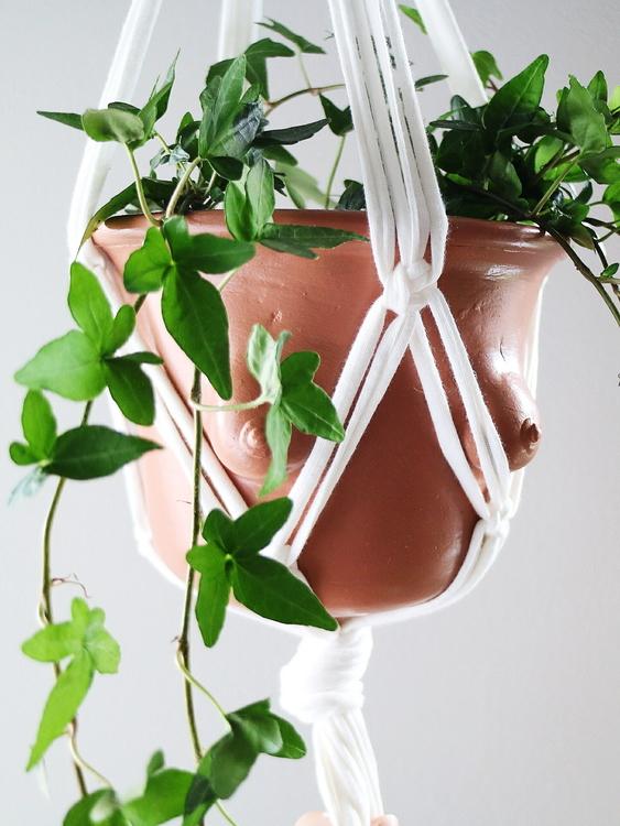 SIMPLE PLANT HANGER