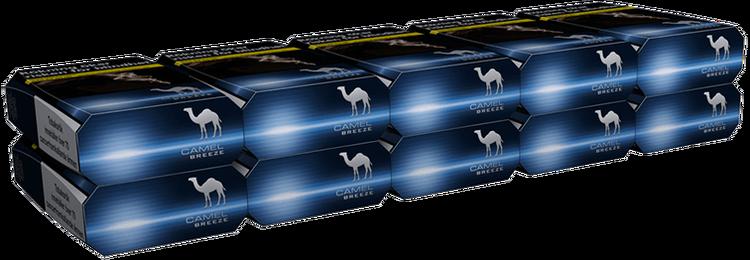 Camel Breeze