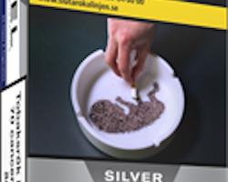 Level Silver 100s