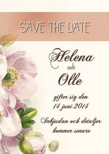 """Have I told you lately"" Save the date pink"