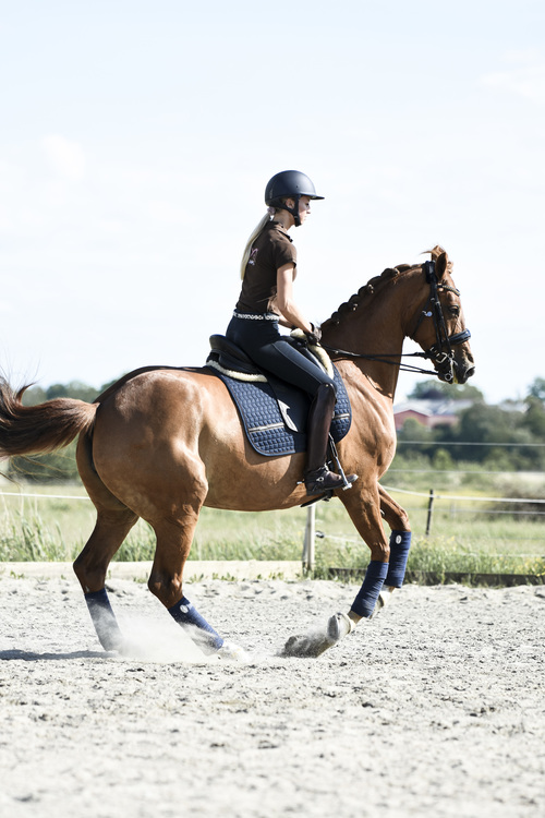 IE NAVY DRESSAGE