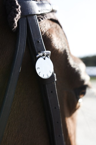 HORSE CHARM SILVER 2020
