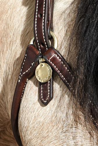 HORSE CHARM BRASS 2020