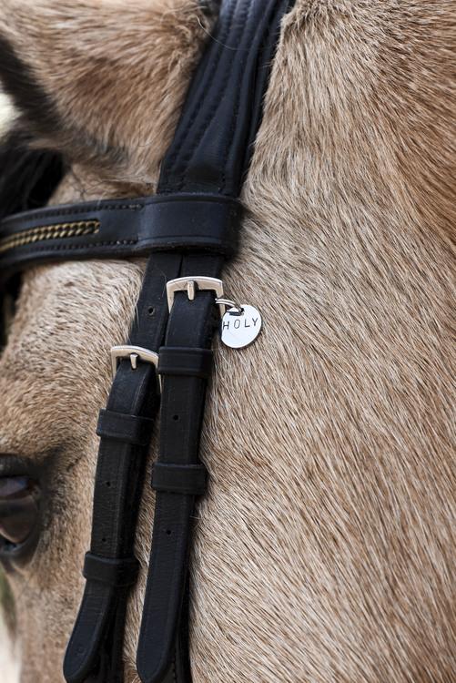 HORSE CHARM PETIT 2020