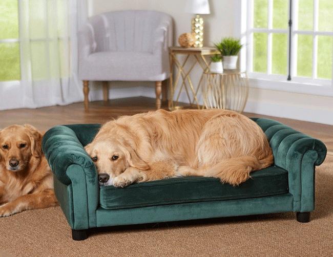 Lyxig hundsäng i smaragdgrön färg - Sullivan