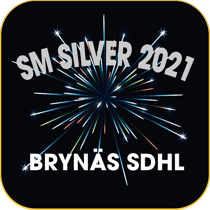Motivask - Brynäs SDHL (Limited Edition)